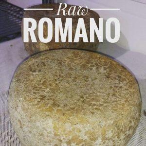 raw romano cheese
